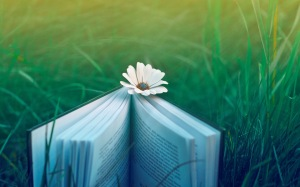 2014-06-Nature-Books-Flowers-Pictures-Hd-Desktop
